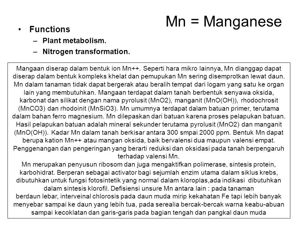 Mn = Manganese Functions –Plant metabolism. –Nitrogen transformation. Mangaan diserap dalam bentuk ion Mn++. Seperti hara mikro lainnya, Mn dianggap d
