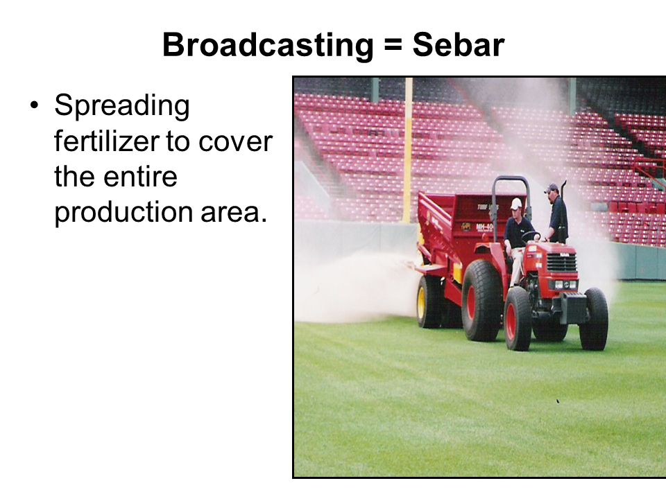 Broadcasting = Sebar Spreading fertilizer to cover the entire production area.