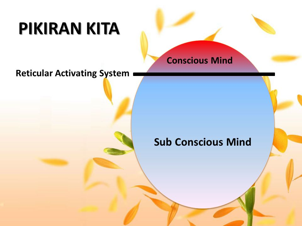 PIKIRAN KITA Reticular Activating System Sub Conscious Mind Conscious Mind