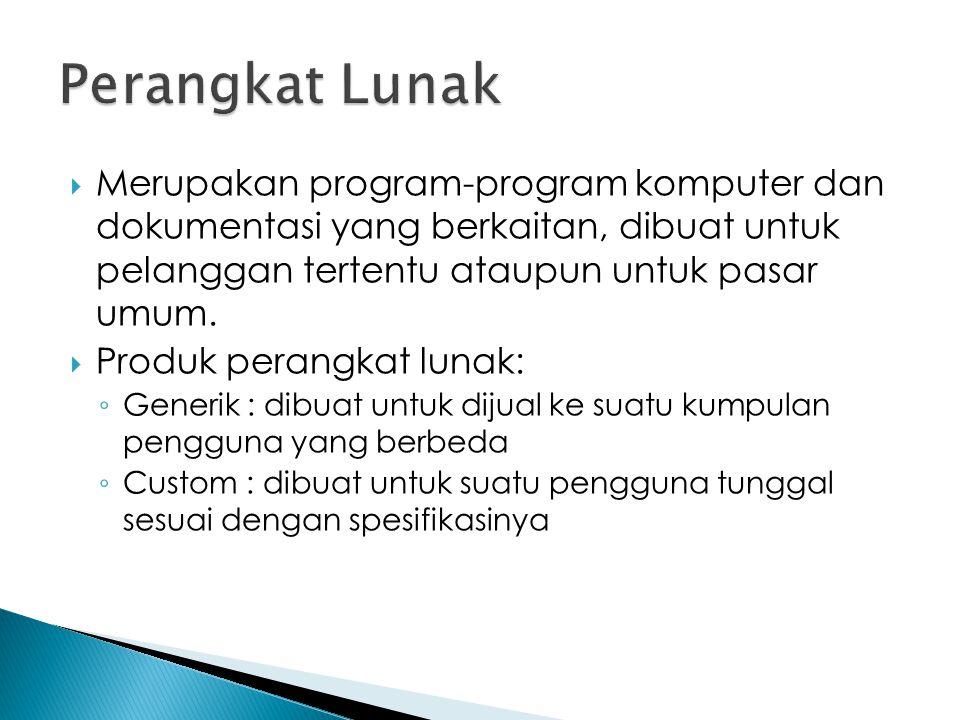  Merupakan program-program komputer dan dokumentasi yang berkaitan, dibuat untuk pelanggan tertentu ataupun untuk pasar umum.  Produk perangkat luna