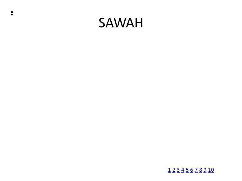 SAWAH 5 11 2 3 4 5 6 7 8 9 102345678910