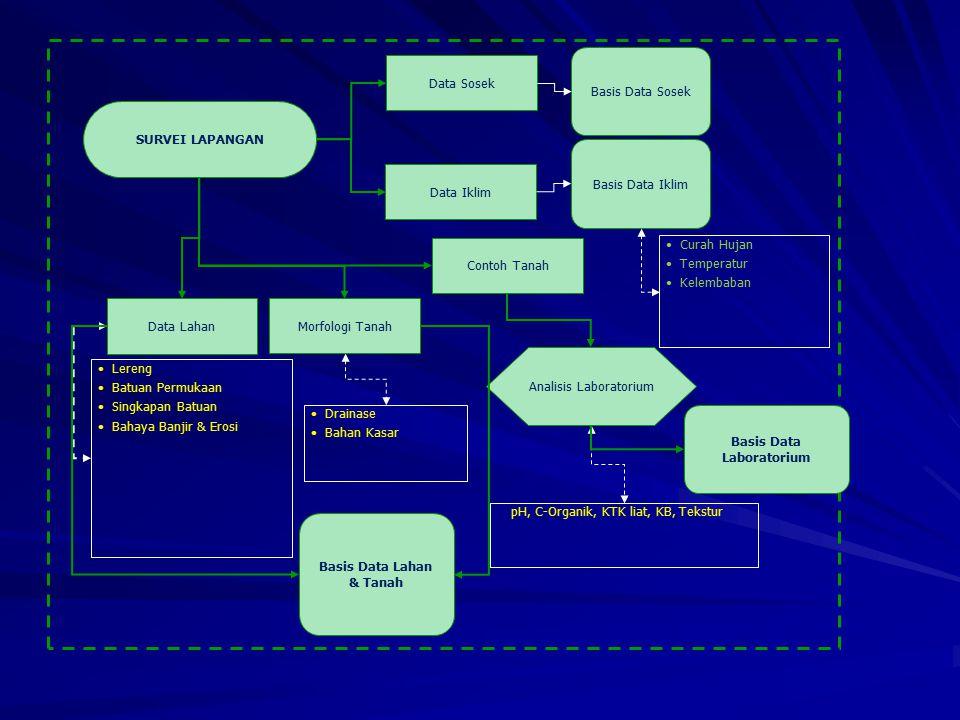 SURVEI LAPANGAN Data Sosek Data Iklim Basis Data Sosek Basis Data Iklim Drainase Bahan Kasar Curah Hujan Temperatur Kelembaban Lereng Batuan Permukaan Singkapan Batuan Bahaya Banjir & Erosi Analisis Laboratorium pH, C-Organik, KTK liat, KB, Tekstur Contoh Tanah Data Lahan Morfologi Tanah Basis Data Lahan & Tanah Basis Data Laboratorium