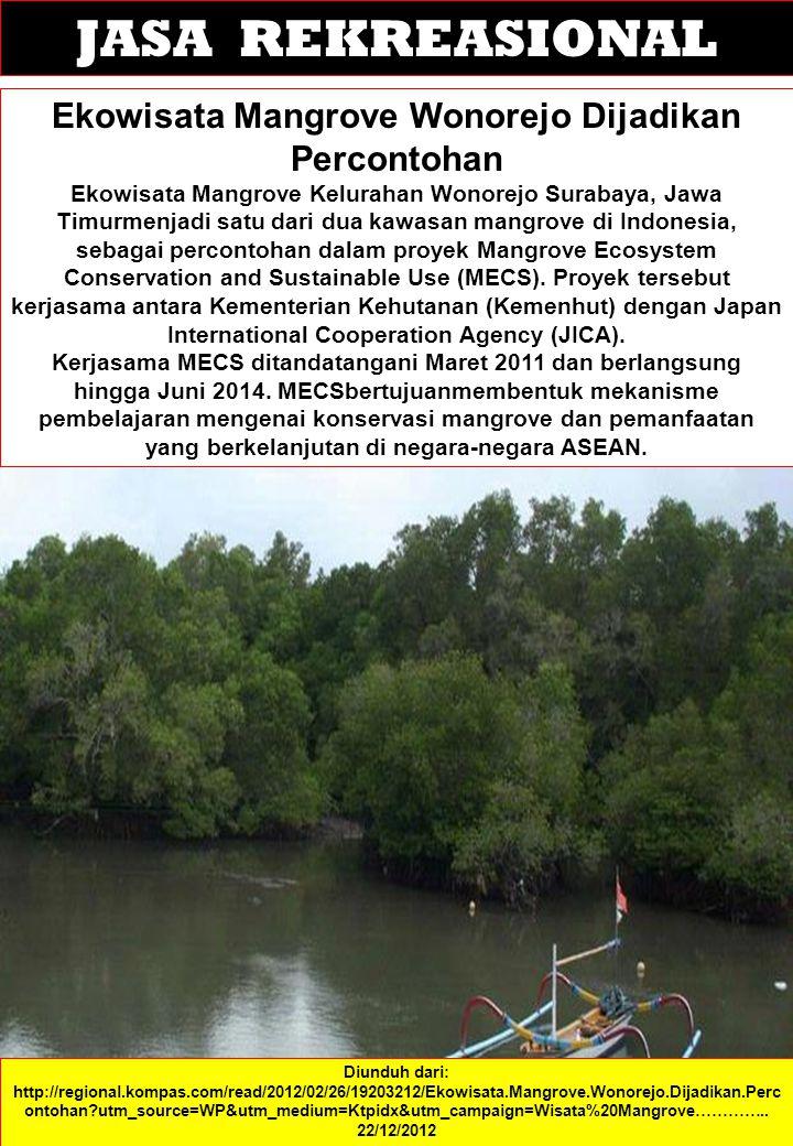 JASA REKREASIONAL Ekowisata Mangrove Wonorejo Dijadikan Percontohan Ekowisata Mangrove Kelurahan Wonorejo Surabaya, Jawa Timurmenjadi satu dari dua kawasan mangrove di Indonesia, sebagai percontohan dalam proyek Mangrove Ecosystem Conservation and Sustainable Use (MECS).
