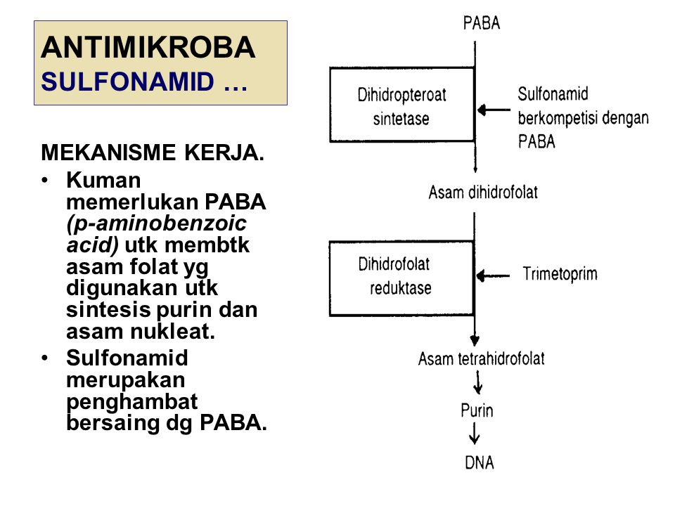ANTIMIKROBA SULFONAMID … MEKANISME KERJA. Kuman memerlukan PABA (p-aminobenzoic acid) utk membtk asam folat yg digunakan utk sintesis purin dan asam n
