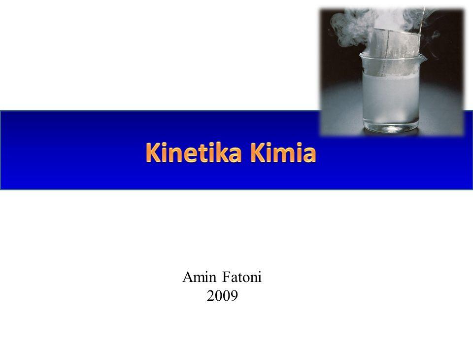 Amin Fatoni 2009