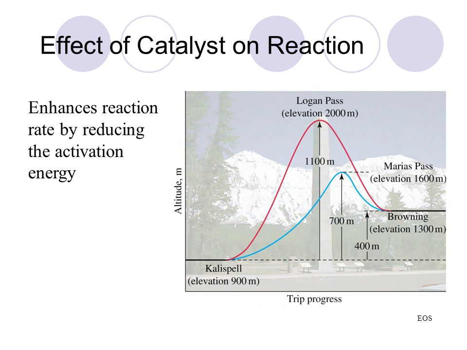 Effect of Catalyst on Reaction Enhances reaction rate by reducing the activation energy EOS