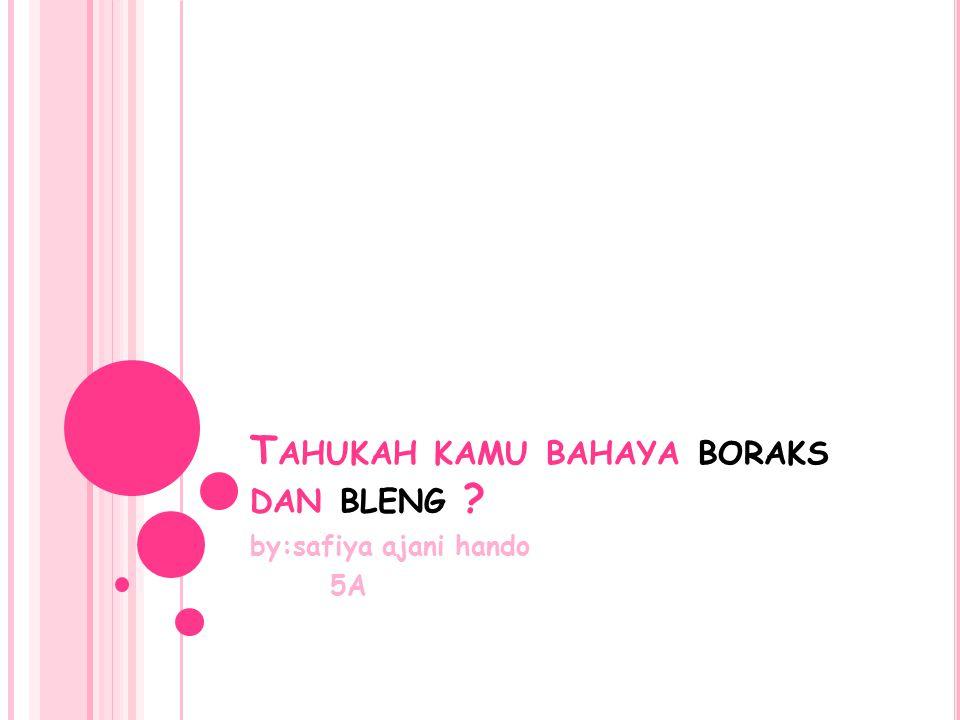 T AHUKAH KAMU BAHAYA BORAKS DAN BLENG ? by:safiya ajani hando 5A