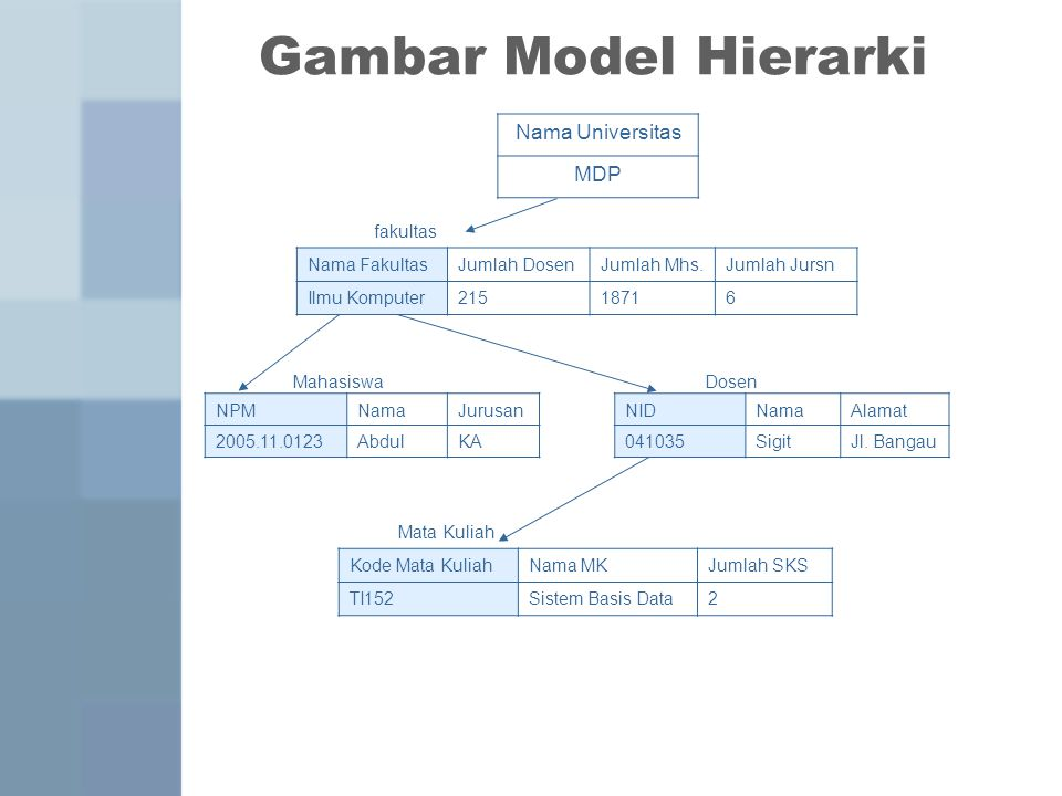 Jenis-Jenis Model Data 2.Model Jaringan (Network Model) -Sering disebut Plex structure -Terdiri atas node² seperti hirarki model -Sebuah child dapat mempunyai lebih dari satu parent.