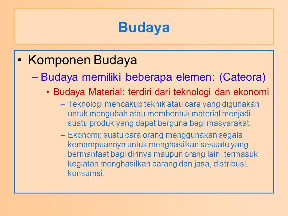 Budaya Komponen Budaya –Budaya memiliki beberapa elemen: (Cateora) Budaya Material: terdiri dari teknologi dan ekonomi –Teknologi mencakup teknik atau