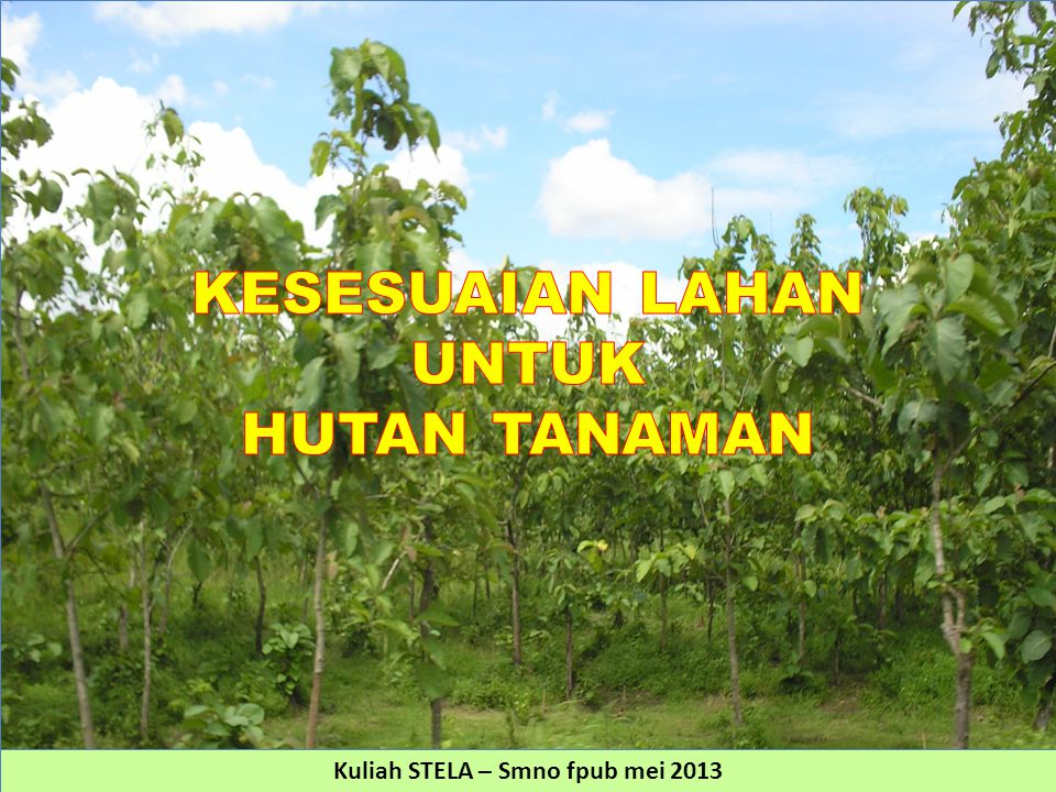 HUTAN TANAMAN Sombroek & Sampaio (1962): the predominant soil of occurrence of mahogany, is yellow podzolic soil with high base saturation and predominantly with imperfect drainage and rich in exchangeable bases.