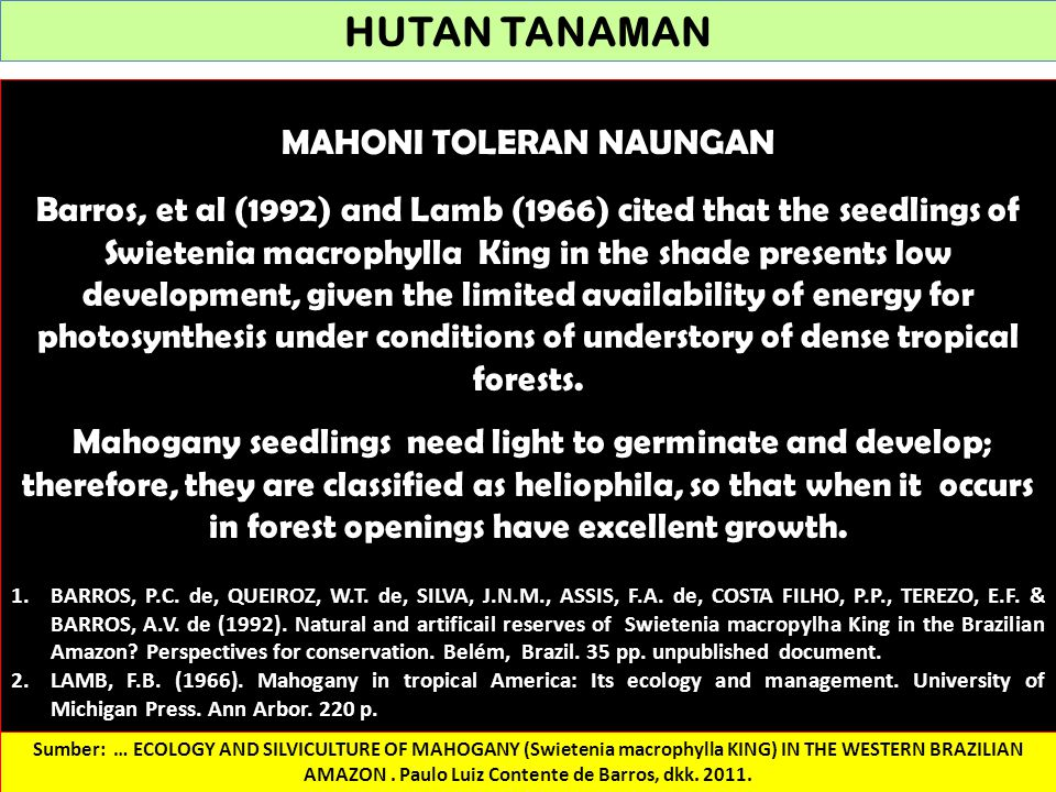 HUTAN TANAMAN MAHONI TOLERAN NAUNGAN Barros, et al (1992) and Lamb (1966) cited that the seedlings of Swietenia macrophylla King in the shade presents