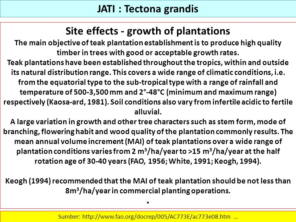 JATI : Tectona grandis Site effects - growth of plantations The main objective of teak plantation establishment is to produce high quality timber in t