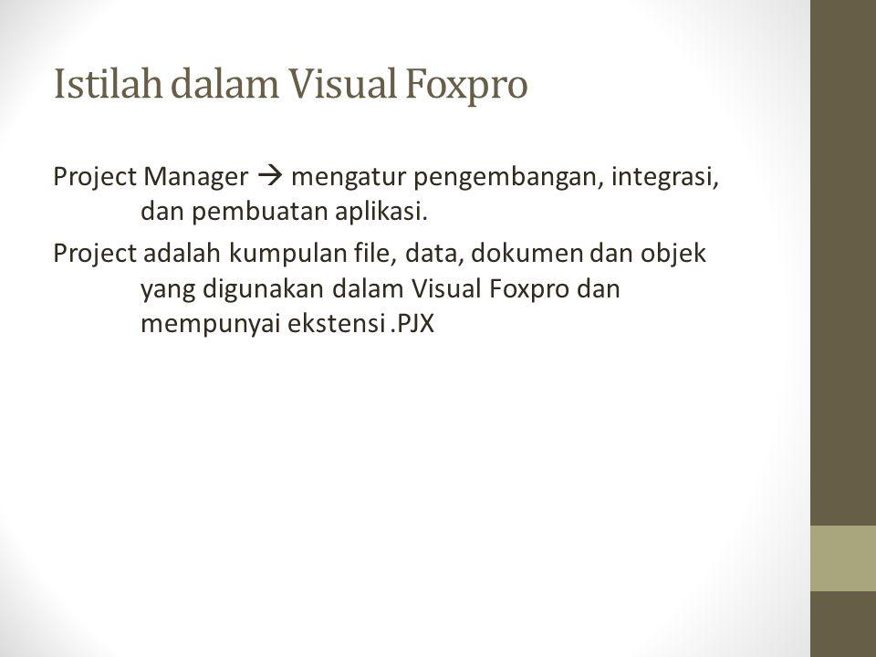Istilah dalam Visual Foxpro Project Manager  mengatur pengembangan, integrasi, dan pembuatan aplikasi. Project adalah kumpulan file, data, dokumen da