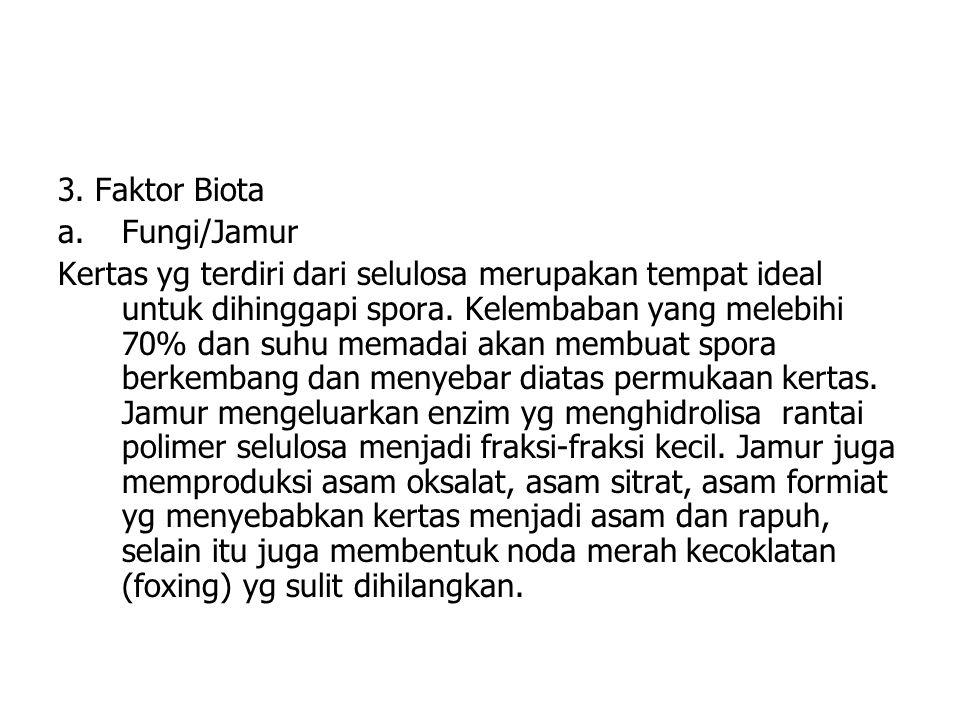3. Faktor Biota a.Fungi/Jamur Kertas yg terdiri dari selulosa merupakan tempat ideal untuk dihinggapi spora. Kelembaban yang melebihi 70% dan suhu mem