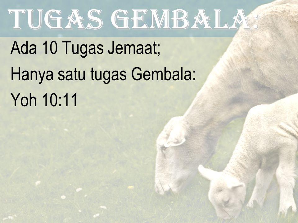 Tugas GEMBALA: Ada 10 Tugas Jemaat; Hanya satu tugas Gembala: Yoh 10:11