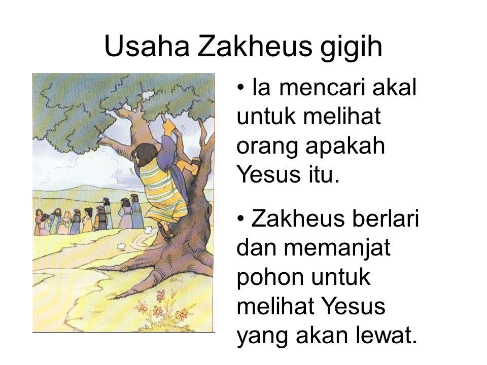 Usaha Zakheus gigih Ia mencari akal untuk melihat orang apakah Yesus itu. Zakheus berlari dan memanjat pohon untuk melihat Yesus yang akan lewat.