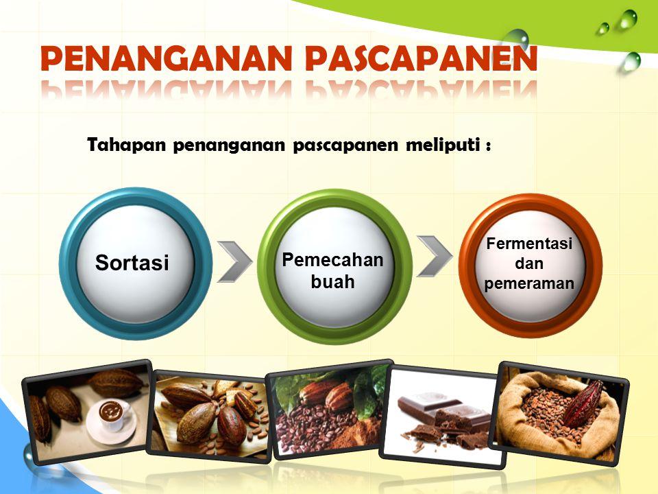 Sortasi Pemecahan buah Fermentasi dan pemeraman Tahapan penanganan pascapanen meliputi :