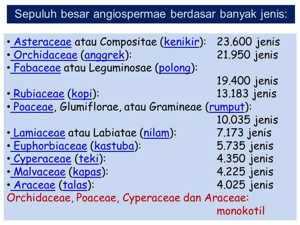 Asteraceae atau Compositae (kenikir): 23.600 jenis Asteraceaekenikir Orchidaceae (anggrek): 21.950 jenis Orchidaceaeanggrek Fabaceae atau Leguminosae
