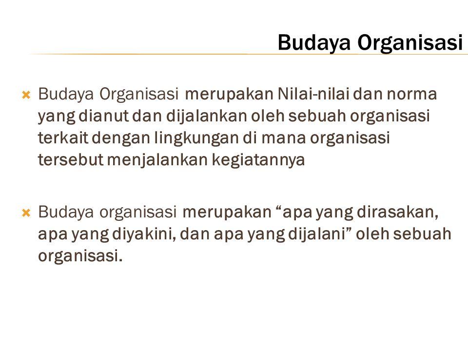 Budaya Organisasi  Budaya Organisasi merupakan Nilai-nilai dan norma yang dianut dan dijalankan oleh sebuah organisasi terkait dengan lingkungan di m