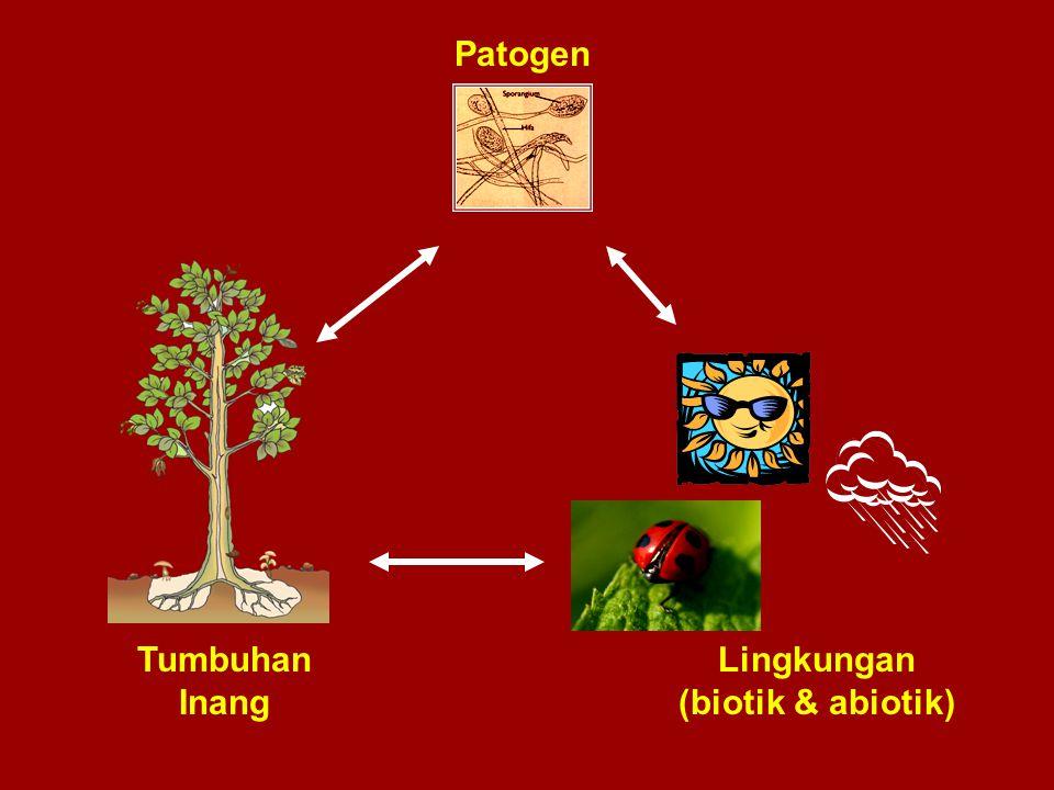 Jadi, dalam pembentukan dan perkembangan tiap penyakit menular ( infectious diseases ) terjadi suatu seri dari beberapa tahap atau proses yang berlangsung kontinyu secara berurutan.
