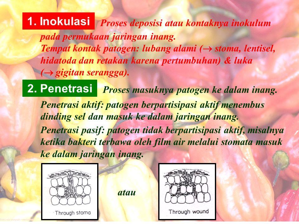 Lubang alami lainnya yang berperan dalam penetrasi adalah : Lentisel : Erwinia carotovora (busuk lunak pada kentang dan wortel) Hidatoda : Xanthomonas campestris (busuk hitam pada crucifera) masuk via tepi/ ujung helai daun.