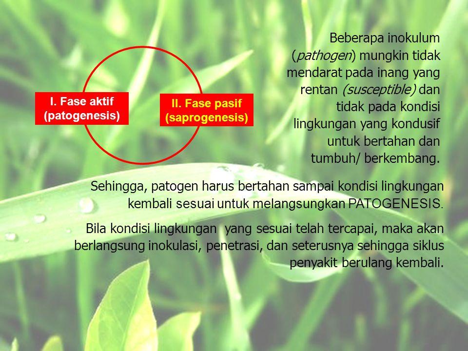 I.Fase aktif (patogenesis) II.