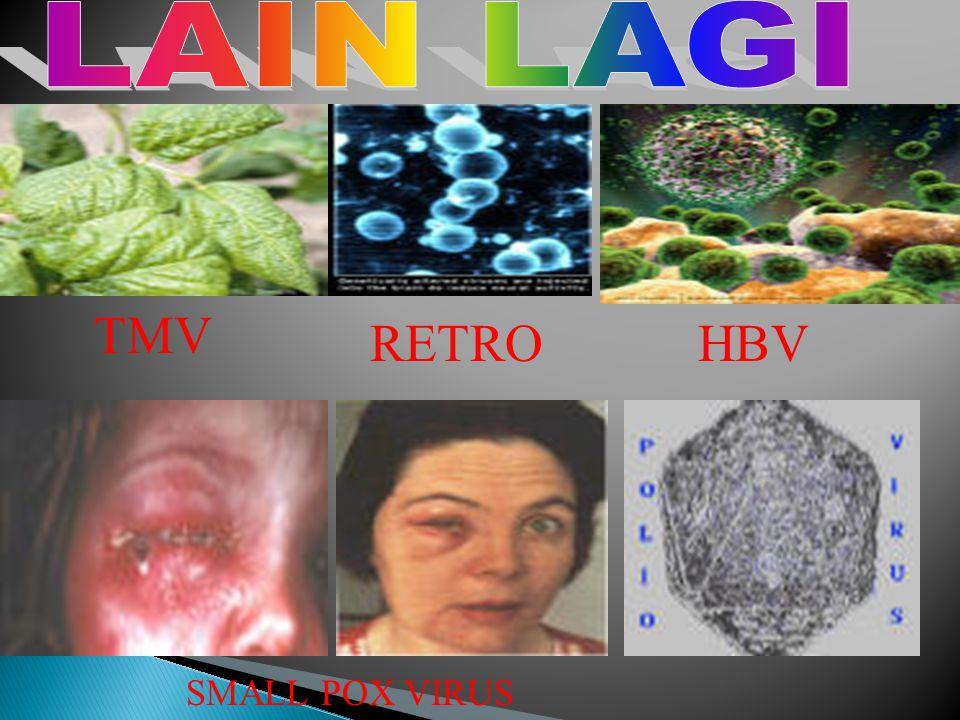 CMV HPV HTLV INF SAL PRN ADENO VIR HCV INFLU 2