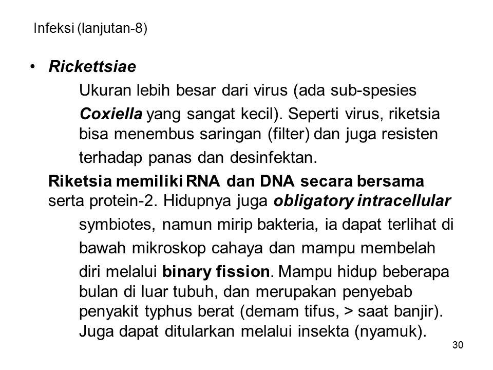 30 Infeksi (lanjutan-8) Rickettsiae Ukuran lebih besar dari virus (ada sub-spesies Coxiella yang sangat kecil). Seperti virus, riketsia bisa menembus