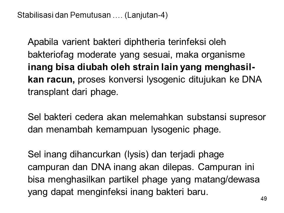 49 Stabilisasi dan Pemutusan …. (Lanjutan-4) Apabila varient bakteri diphtheria terinfeksi oleh bakteriofag moderate yang sesuai, maka organisme inang