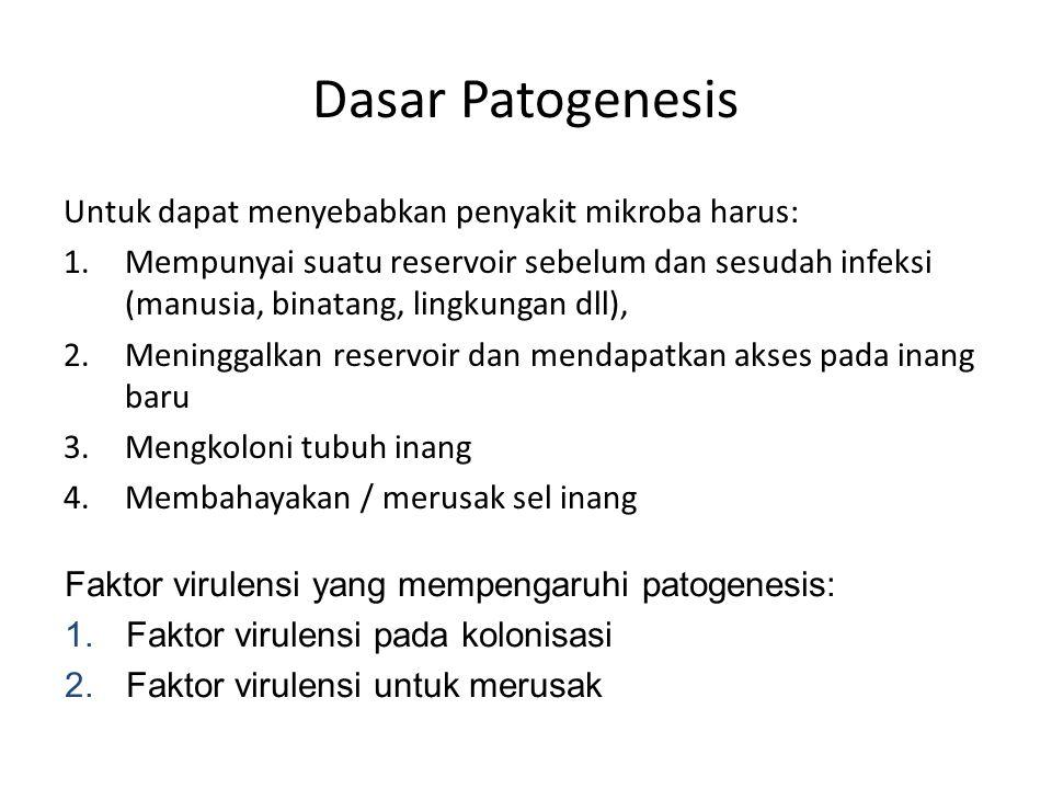 Dasar Patogenesis Untuk dapat menyebabkan penyakit mikroba harus: 1.Mempunyai suatu reservoir sebelum dan sesudah infeksi (manusia, binatang, lingkung