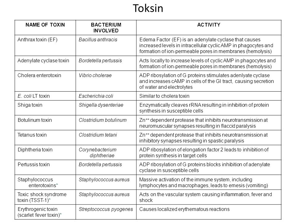 Toksin NAME OF TOXINBACTERIUM INVOLVED ACTIVITY Anthrax toxin (EF)Bacillus anthracisEdema Factor (EF) is an adenylate cyclase that causes increased levels in intracellular cyclic AMP in phagocytes and formation of ion-permeable pores in membranes (hemolysis) Adenylate cyclase toxinBordetella pertussisActs locally to increase levels of cyclic AMP in phagocytes and formation of ion-permeable pores in membranes (hemolysis) Cholera enterotoxinVibrio choleraeADP ribosylation of G proteins stimulates adenlyate cyclase and increases cAMP in cells of the GI tract, causing secretion of water and electrolytes E.