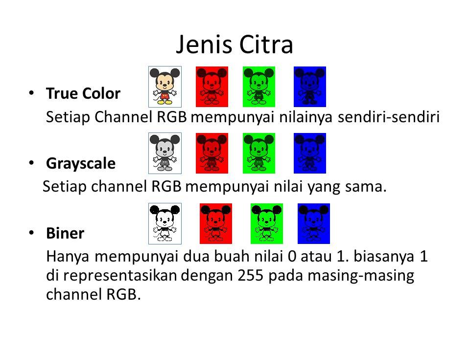 Jenis Citra True Color Setiap Channel RGB mempunyai nilainya sendiri-sendiri Grayscale Setiap channel RGB mempunyai nilai yang sama.