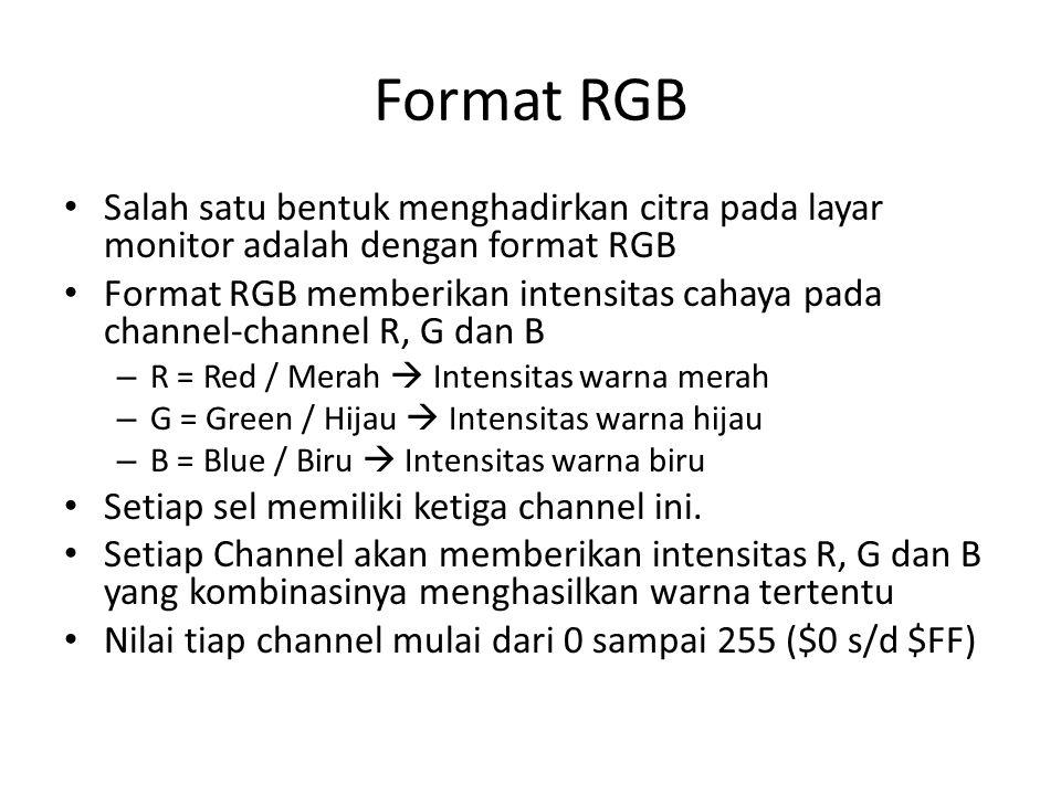 Format RGB Salah satu bentuk menghadirkan citra pada layar monitor adalah dengan format RGB Format RGB memberikan intensitas cahaya pada channel-channel R, G dan B – R = Red / Merah  Intensitas warna merah – G = Green / Hijau  Intensitas warna hijau – B = Blue / Biru  Intensitas warna biru Setiap sel memiliki ketiga channel ini.