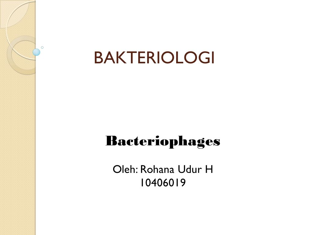 BAKTERIOLOGI Bacteriophages Oleh: Rohana Udur H 10406019