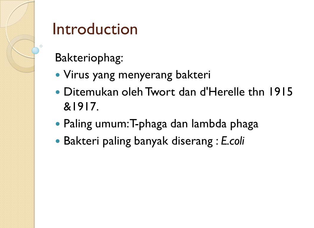Introduction Bakteriophag: Virus yang menyerang bakteri Ditemukan oleh Twort dan d'Herelle thn 1915 &1917. Paling umum: T-phaga dan lambda phaga Bakte