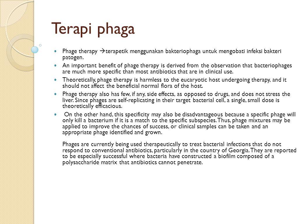 Terapi phaga Phage therapy  terapetik menggunakan bakteriophaga untuk mengobati infeksi bakteri patogen. An important benefit of phage therapy is der