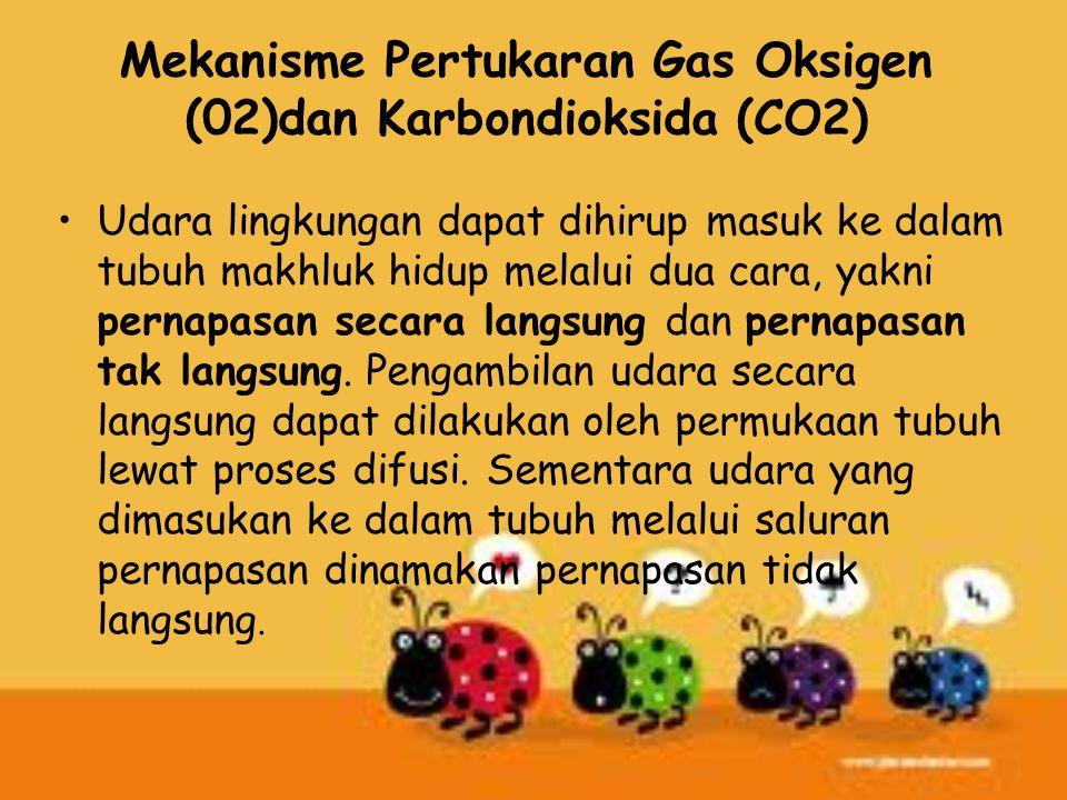 Mekanisme Pertukaran Gas Oksigen (02)dan Karbondioksida (CO2) Udara lingkungan dapat dihirup masuk ke dalam tubuh makhluk hidup melalui dua cara, yakn