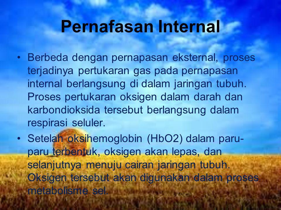 Pernafasan Internal Berbeda dengan pernapasan eksternal, proses terjadinya pertukaran gas pada pernapasan internal berlangsung di dalam jaringan tubuh