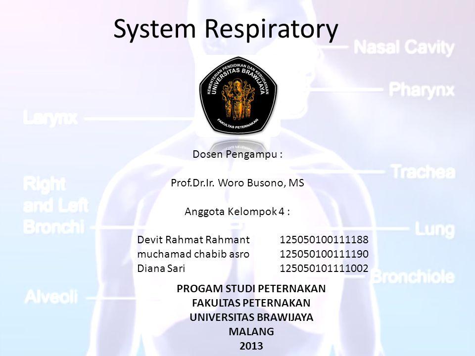 System Respiratory Dosen Pengampu : Prof.Dr.Ir. Woro Busono, MS Anggota Kelompok 4 : Devit Rahmat Rahmant125050100111188 muchamad chabib asro125050100