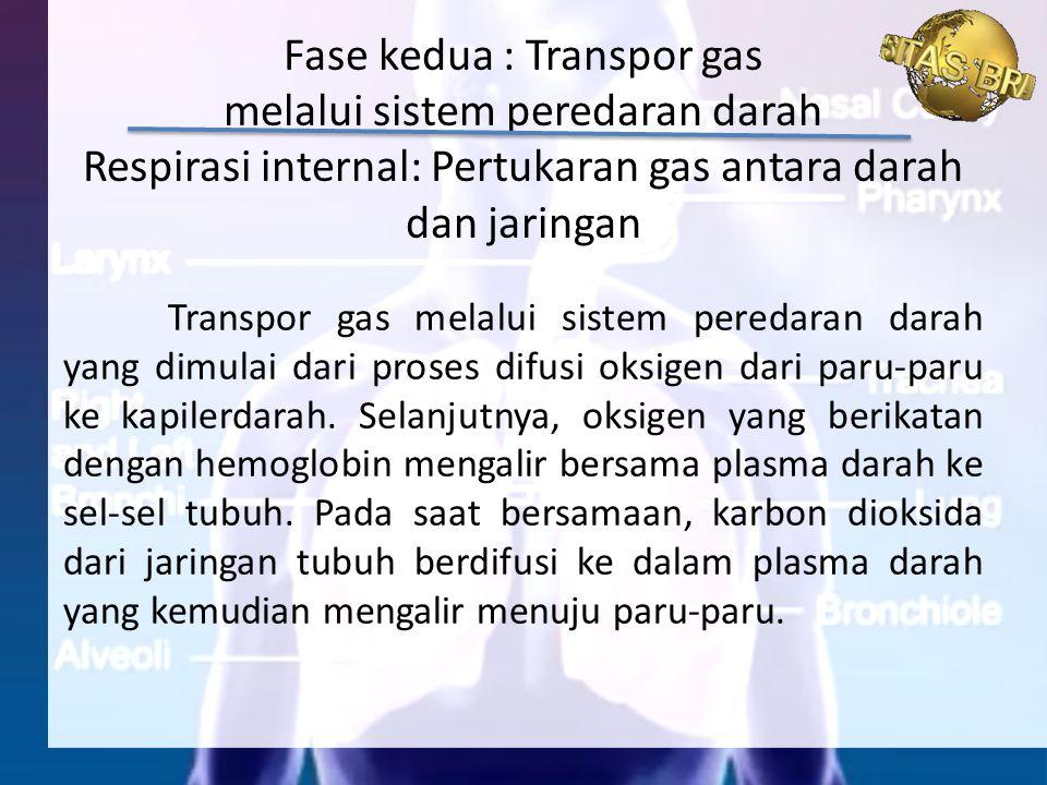 Transpor gas melalui sistem peredaran darah yang dimulai dari proses difusi oksigen dari paru-paru ke kapilerdarah. Selanjutnya, oksigen yang berikata