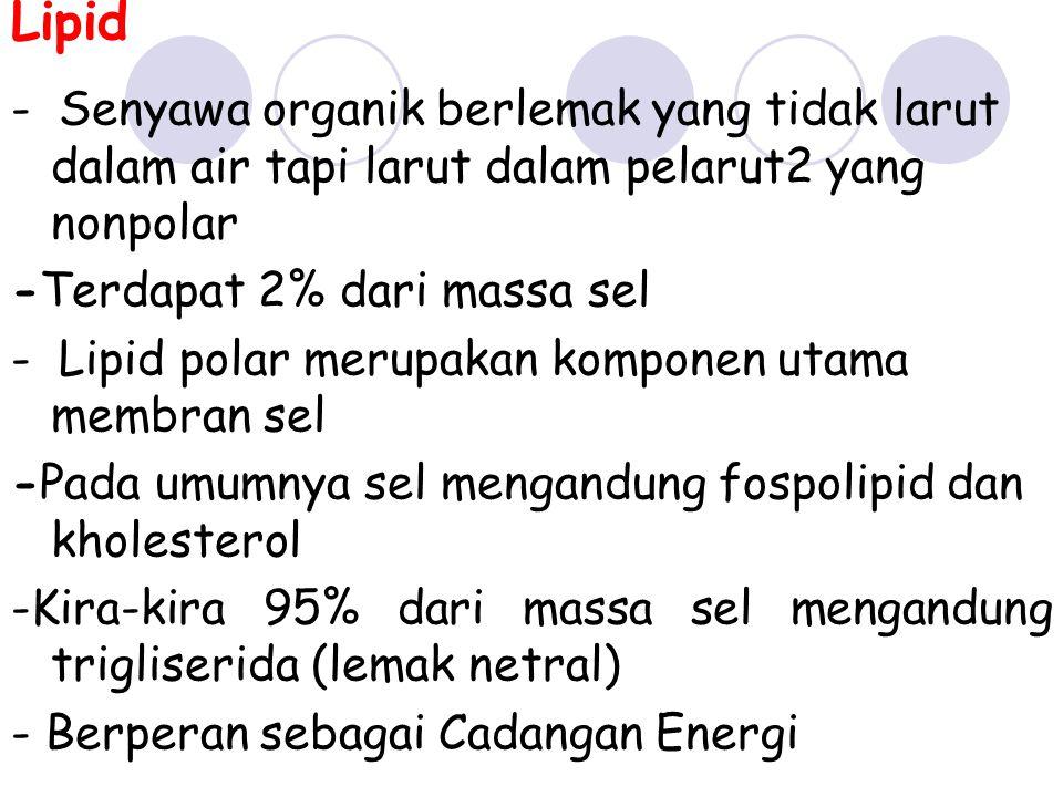 Lipid - Senyawa organik berlemak yang tidak larut dalam air tapi larut dalam pelarut2 yang nonpolar -Terdapat 2% dari massa sel - Lipid polar merupaka