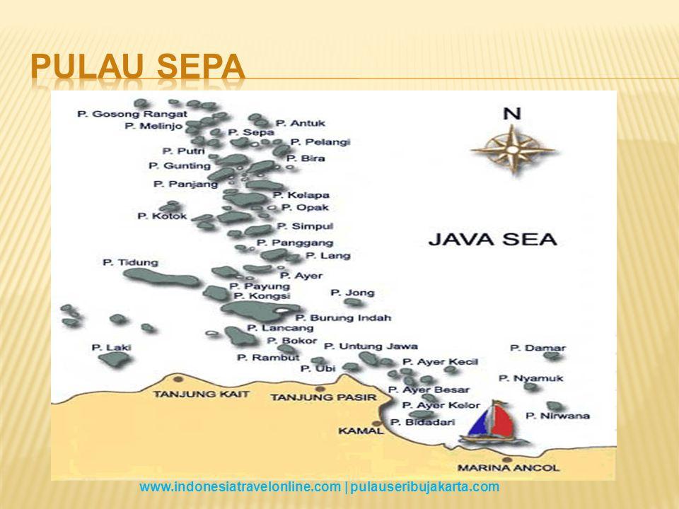 Keberangkatan dari Marina Ancol Dermaga 19 ( Berangkat jam 08.00am   Boarding time 07.30 ).