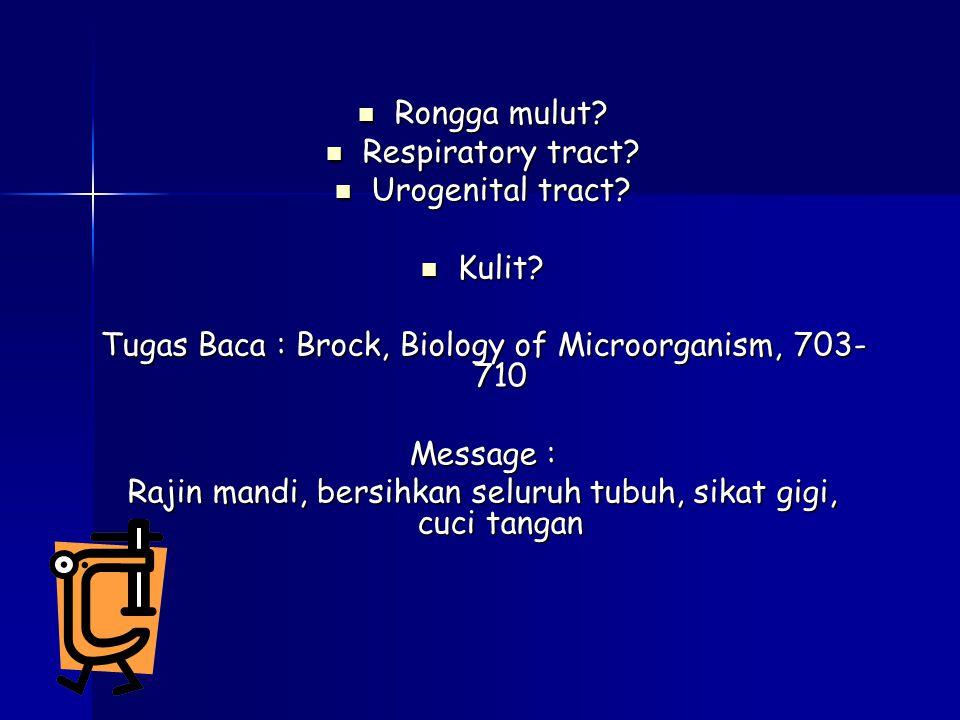 Rongga mulut.Rongga mulut. Respiratory tract. Respiratory tract.