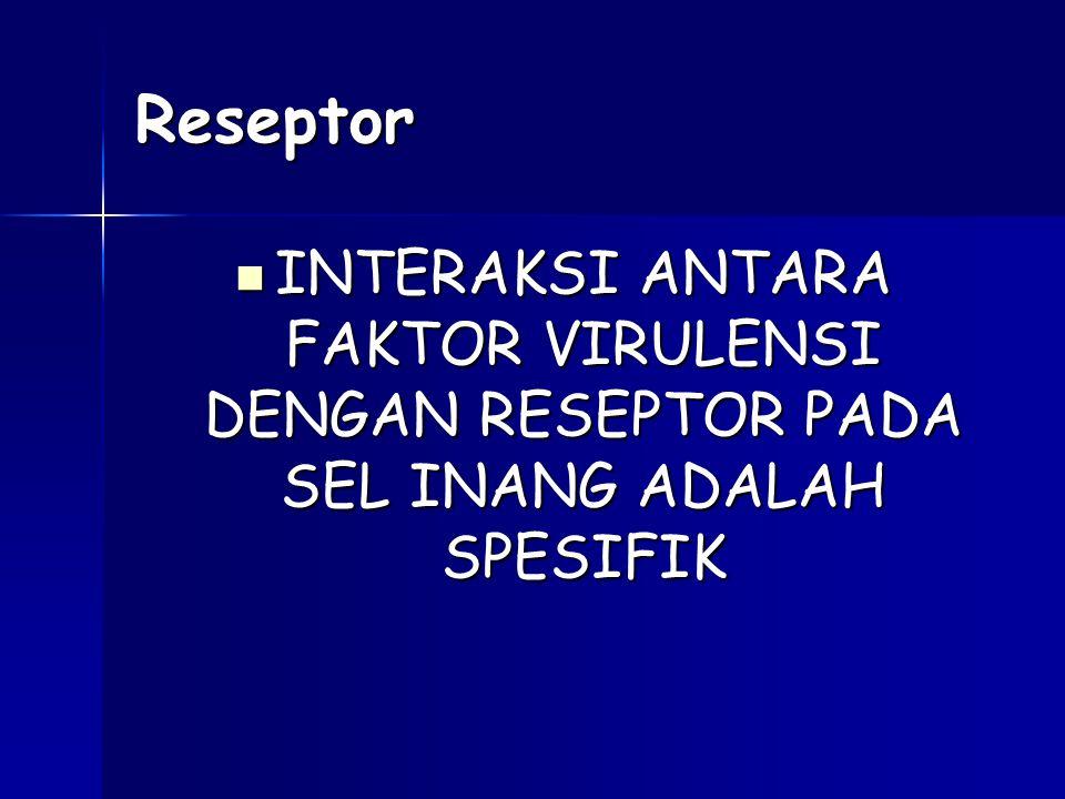 Reseptor INTERAKSI ANTARA FAKTOR VIRULENSI DENGAN RESEPTOR PADA SEL INANG ADALAH SPESIFIK INTERAKSI ANTARA FAKTOR VIRULENSI DENGAN RESEPTOR PADA SEL I