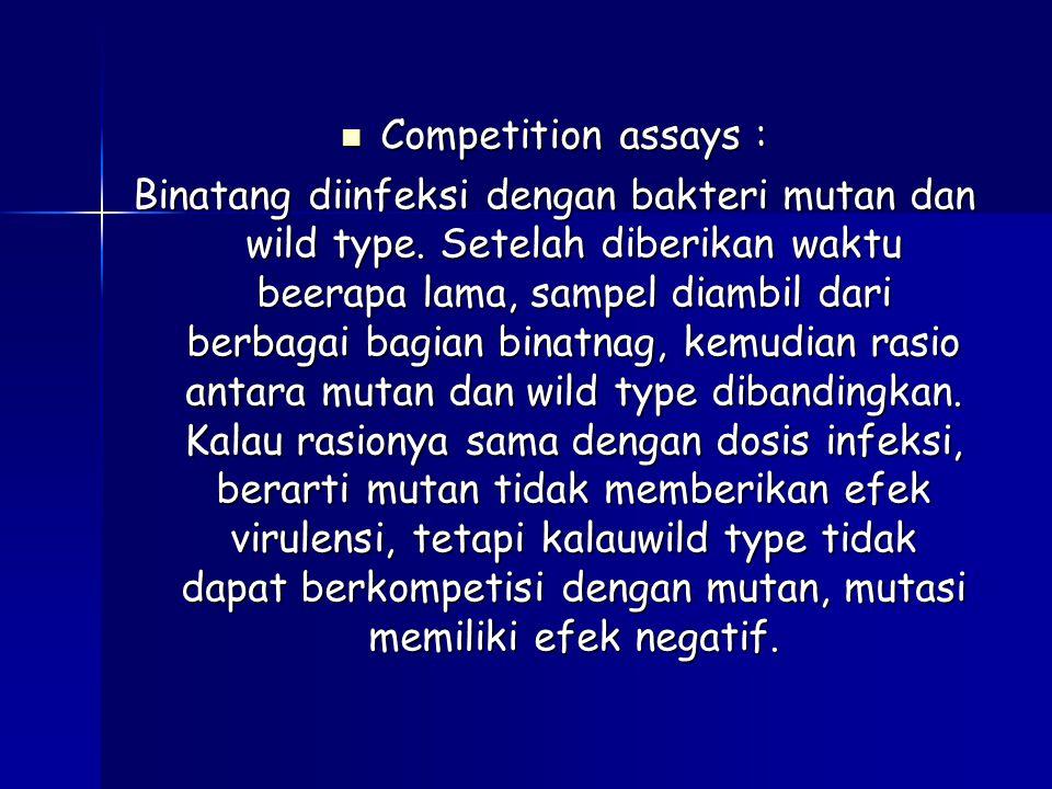 Competition assays : Competition assays : Binatang diinfeksi dengan bakteri mutan dan wild type. Setelah diberikan waktu beerapa lama, sampel diambil
