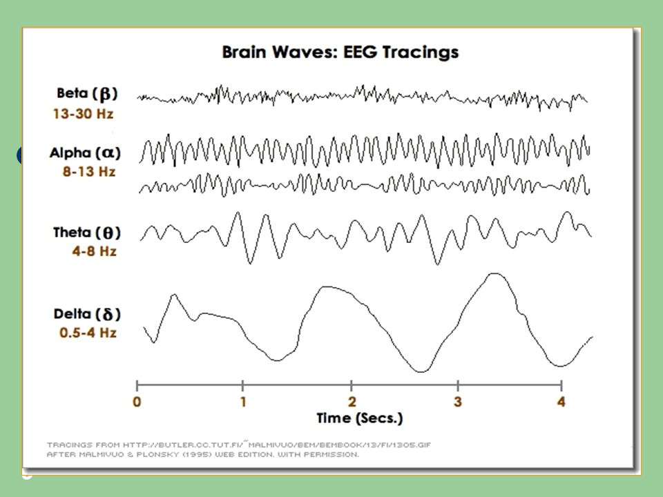 10 KARAKTERISTIK REM DAN NREM FASE REM - terjadi gerakan mata cepat - disebut juga fase mimpi - berlangsung sekitar 10-30 menit - lebih sukar dibangunkan - denyut jantung dan napas ireguler - tonus otot menurun tajam - terjadi peningkatan metabolisme otak sebesar 20% (gelombang otak mirip saat terjaga) sehingga gelombang REM disebut gelombang paradoksikal.