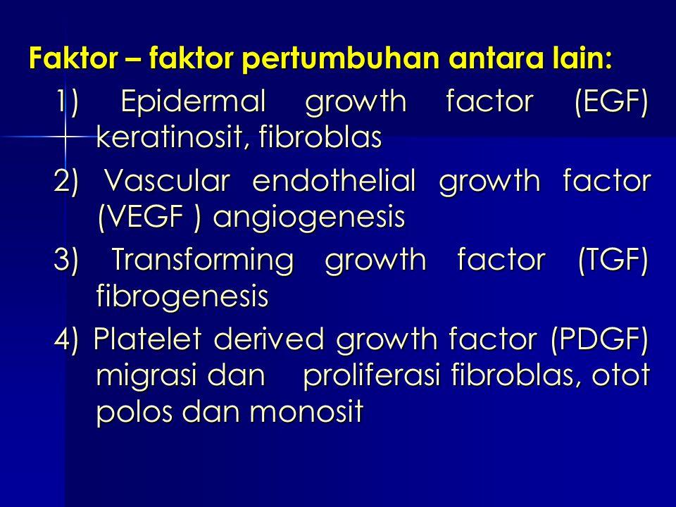 Faktor – faktor pertumbuhan antara lain: 1) Epidermal growth factor (EGF) keratinosit, fibroblas 2) Vascular endothelial growth factor (VEGF ) angioge