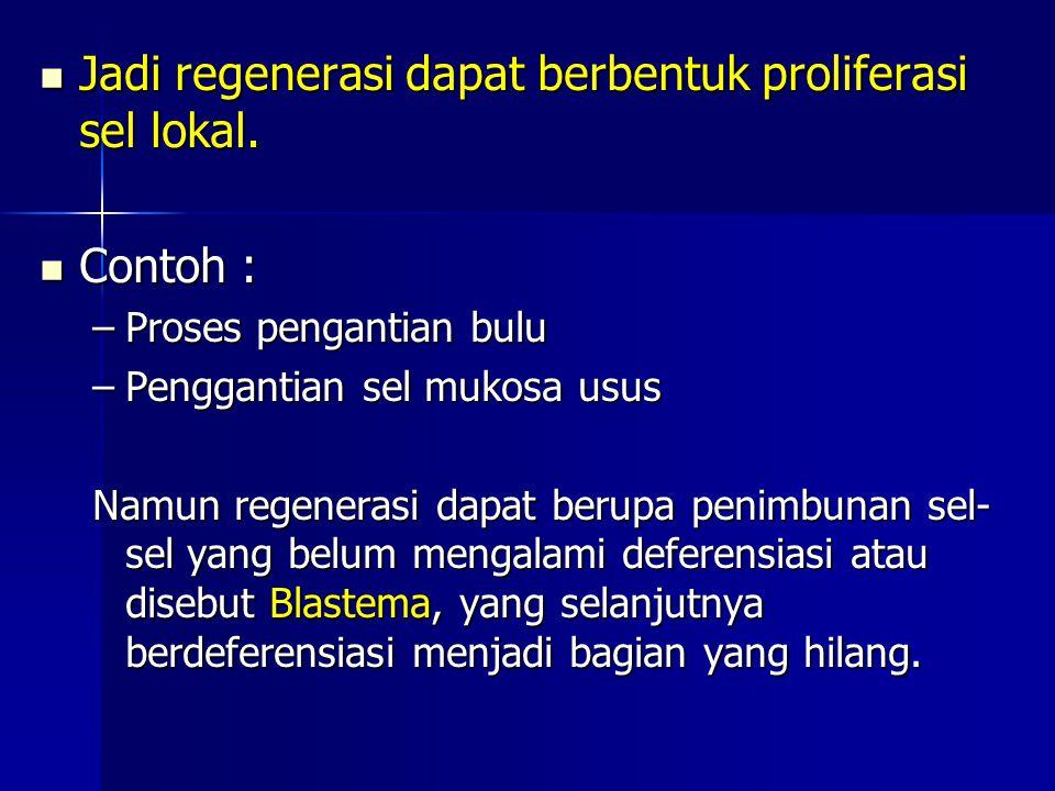 Jadi regenerasi dapat berbentuk proliferasi sel lokal. Jadi regenerasi dapat berbentuk proliferasi sel lokal. Contoh : Contoh : –Proses pengantian bul