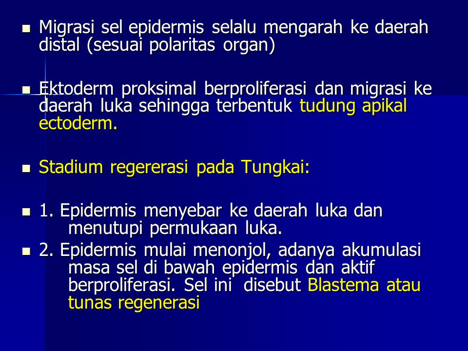 Migrasi sel epidermis selalu mengarah ke daerah distal (sesuai polaritas organ) Migrasi sel epidermis selalu mengarah ke daerah distal (sesuai polarit