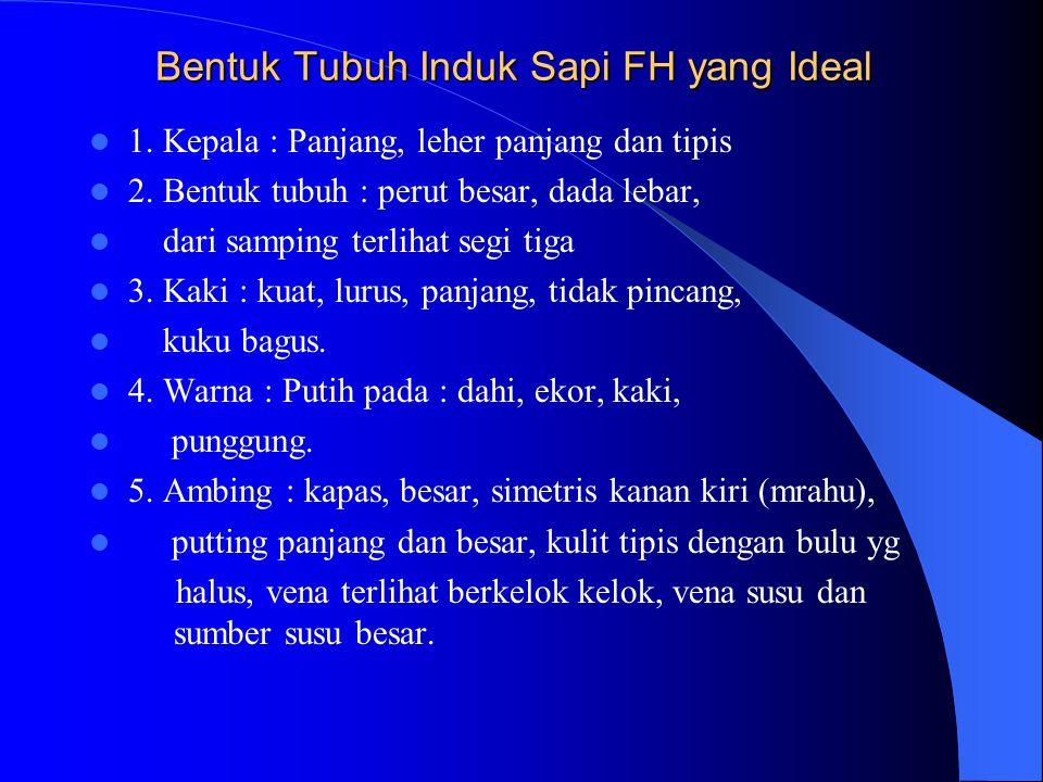 Bentuk Tubuh Induk Sapi FH yang Ideal 1.Kepala : Panjang, leher panjang dan tipis 2.